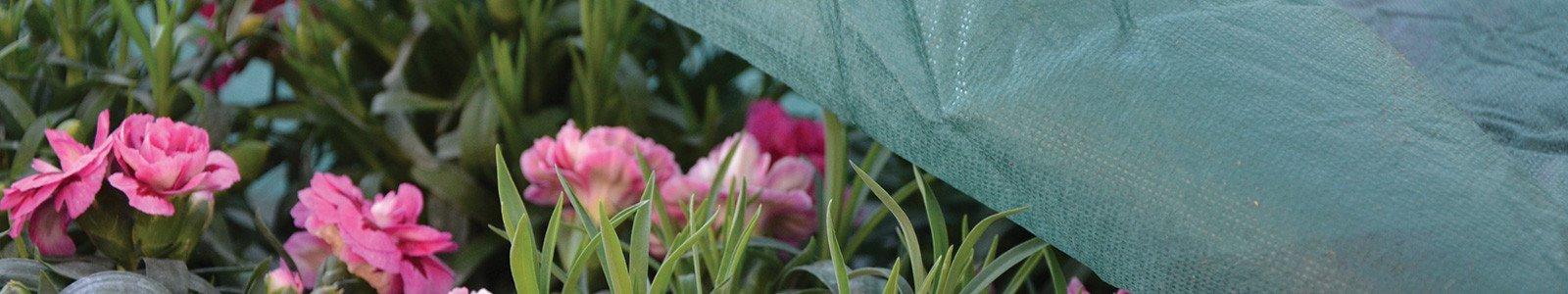 TNT e sistemi di protezione per le piante
